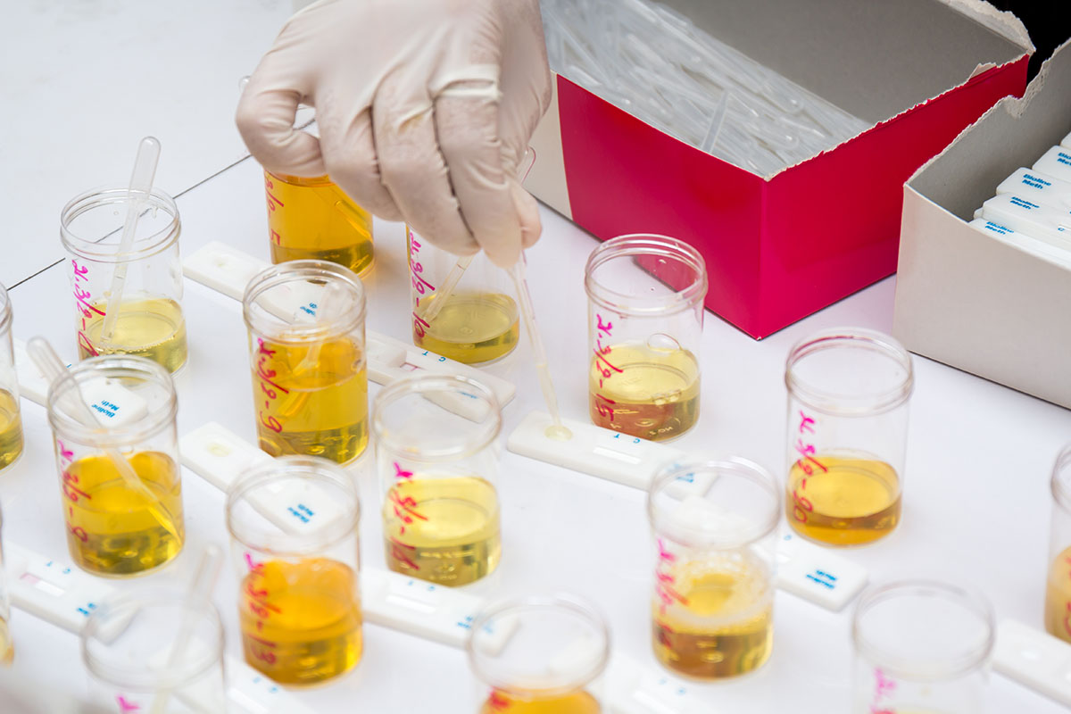 list of top synthetic urine kits that can help beat a drug test